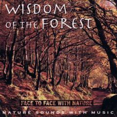 Wisdom of the Forest - Medwyn Goodall