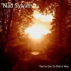 You've Got to Find a Way - Nad Sylvan