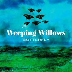 Butterfly - Weeping Willows