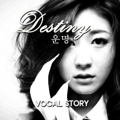 Destiny - Vocal Story