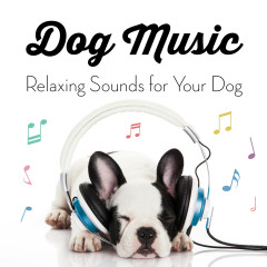 Music for Dogs - Relaxing Sounds for Your Dog - Sleepy Dogs