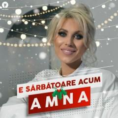 E Sărbătoare Acum (Single) - Amna