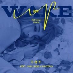 Tỉnh Lại / 醒来 (Roktepux Remix)