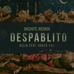 Despablito (Mgntc Remix)