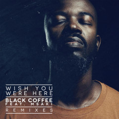 Wish You Were Here (Remixes) - Black Coffee,Msaki