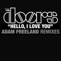 Hello I Love You (Adam Freeland Mixes) - The Doors