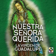 Nuestra Senõra Querida La Virgen De Guadalupe - Various Artists