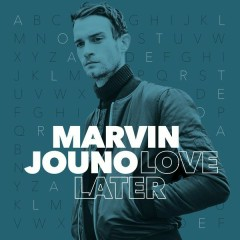 Love Later (Robbie Remix)