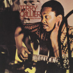 I Just Can't Help Myself - Terry Callier