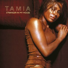 Stranger in My House - Tamia