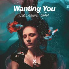 Wanting You (Single)