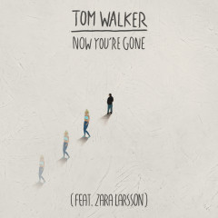 Now You're Gone (Radio Edit) - Tom Walker, Zara Larsson