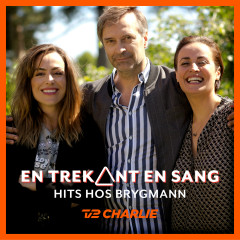 En Trekant En Sang 3 - Hits Hos Brygmann - Various Artists