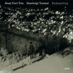 Birdwatching - Anat Fort Trio, Gianluigi Trovesi