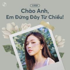 Chào Anh, Em Đứng Đây Từ Chiều! - Various Artists