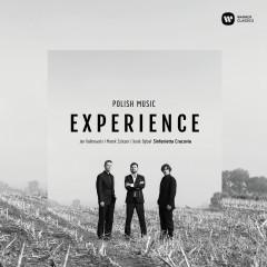 Polish Music Experience - Various Artists, Jan Kalinowski, Marek Szlezer