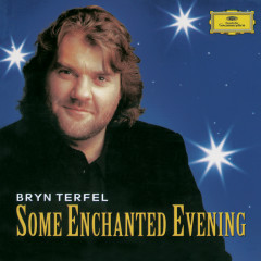 Some Enchanted Evening. The Best Of The Musicals - Bryn Terfel