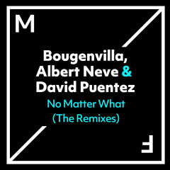 No Matter What (The Remixes) - Bougenvilla, Albert Neve, David Puentez