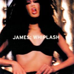 Whiplash - Kitkasem McFadden