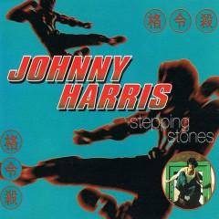 Stepping Stones - Johnny Harris