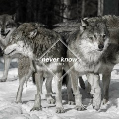 Never Know (Few Wolves VIP remix) - Few Wolves,Freja Kirk