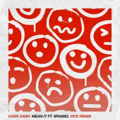Mean It (feat. Wrabel) [Vice Remix] - Cash Cash, Wrabel