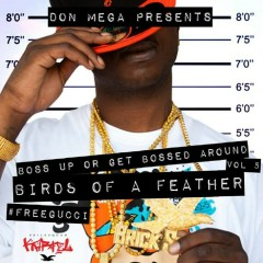 Birds of a Feather - Don Mega, Gucci Mane