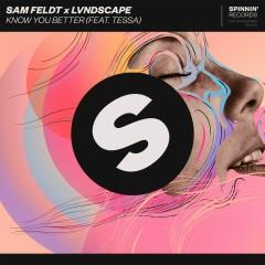 Know You Better (feat. Tessa Odden) - Sam Feldt, LVNDSCAPE, Tessa Odden