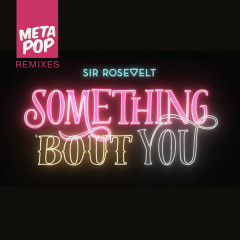 Something Bout You: MetaPop Remixes (Ryan Taylor Remix)