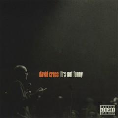It's Not Funny - David Cross
