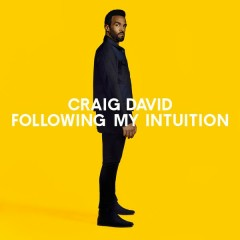 Following My Intuition (Deluxe) - Craig David