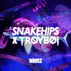 Wavez - Snakehips, TroyBoi