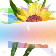 [Re:flower] PROJECT #3 - EXID