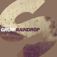 Raindrop - Grum