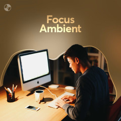 Focus Ambient - Various Artists