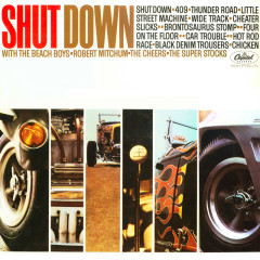 Shut Down - Various Artists