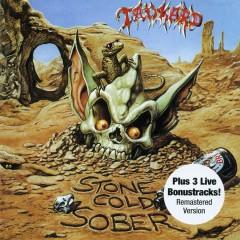 Stone Cold Sober (Bonus Track Edition) - Tankard