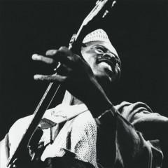The Source - Ali Farka Touré