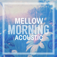 Mellow Morning Acoustic - Various Artists