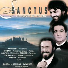 Sanctus - Das Konzert für die Seele - Placido Domingo, Bryn Terfel