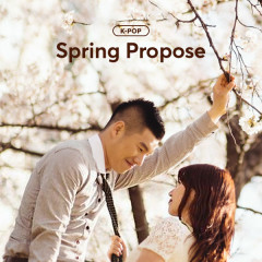 Spring Propose