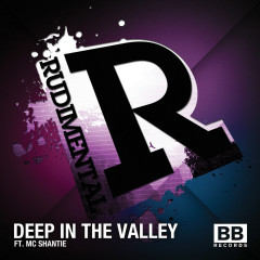 Deep in the Valley - Rudimental