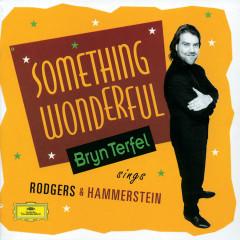 Bryn Terfel - Something Wonderful - Bryn Terfel, English Northern Philharmonia, Paul Daniel