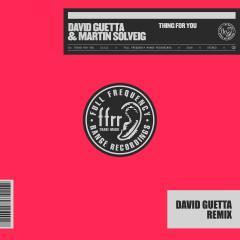 Thing For You (David Guetta Remix) - David Guetta, Martin Solveig