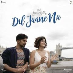 Dil Jaane Na