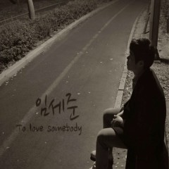 To Love Somebody - Im Se Jun