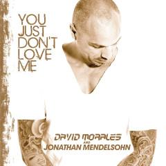 You Just Dont Love Me - David Morales, Jonathan Mendelsohn