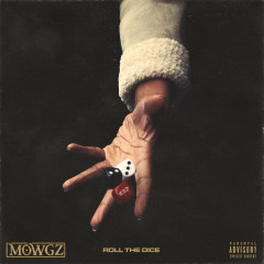 Roll the Dice - Mowgs