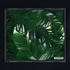 Jazz In My (Single)