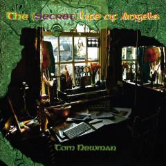 The (Secret) Life Of Angels - Tom Newman